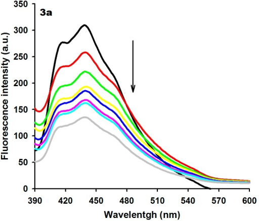 Fluorescence spectra of derivative 3a (15 µM) with increasing concentrations of ctDNA. [DNA] = 0 (black), 10 (red), 20 (green), 40 (yellow), 60 (blue), 80 (pink), 100 (light blue) and 120 (gray) µM. Arrow (↓) refers to hypochromic effect.