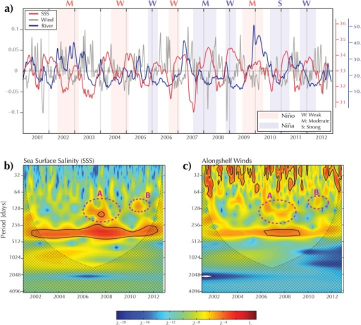 (a) Time series of the sea surface salinities (SSS) averaged over Region 1 (red line), the alongshelf component of the wind stress forcing averaged over Region 1 (gray line) and the Rio de la Plata (RdlP) discharge (blue line); (b) wavelet spectra of the time series of the SSS averaged over Region 1; (c) idem for the alongshelf wind stress forcing. The black contours show regions with a confidence level higher than 95%. Hatched regions indicate the cone of influence. The time series for the wavelet analyses have been normalized thus the color bar does not have units.