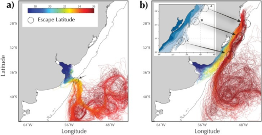 Float trajectories. (a) Upstream pathway; (b) downstream pathway. The color corresponds to the salinities along those trajectories. The inset of Figure 8b shows the SSS observed by Piola et al. [2008]. The dotted circles mark the location of offshore detrainments. The black contour marks the location of the shelfbreak (200 m isobath).