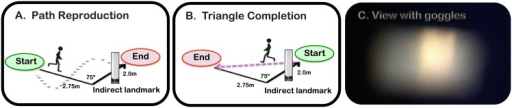 A & B: Schematic of path reproduction and triangle completion tasks. C: View of the landmark through the goggles worn by normally sighted participants. Participants were guided along the black path by the experimenter, and then: (i) For path reproduction, guided back to the start position and asked to reproduce the path as accurately as possible. (ii) For triangle completion, asked to return to the start position as accurately as possible.