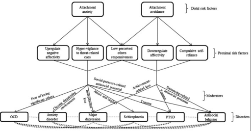 In this transdiagnostic model, attachment dispositions serve as distal risk factors for multiple psychopathological disorders. Each disposition affects a triad of proximal risk factors, which mediate the effect of attachment anxiety and avoidance on psychopathology. Specific moderators determine the divergent trajectories that individuals high on the proximal risk factors may take.