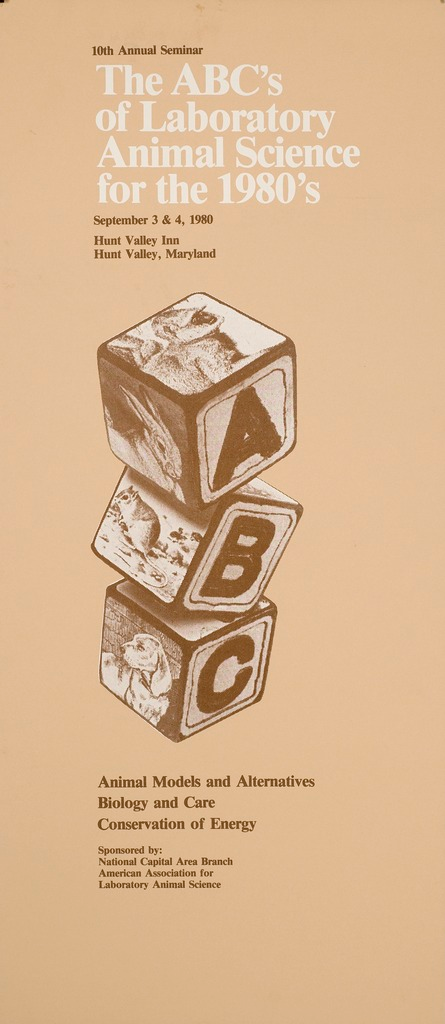 <p>Building blocks on which one side is an alphabetical letter; the other sides are pictures of animals including a dog, a rodent, a rabbit, and a monkey.</p>