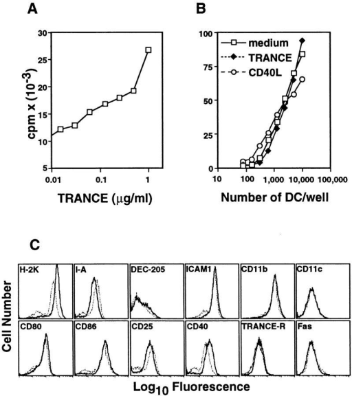 Cell surface marker expression and T cell stimulatory function of TRANCE-treated BMDCs. (A) 2.5 × 103 BMDCs were cultured  with increasing doses of TRANCE in a final volume of 100 μl in triplicate in flat-bottomed 96-well plates. After 48 h, 105 purified allogeneic T  cells in 100 μl were added in each well and [3H]thymidine incorporation  was assessed after 3 d of culture. One experiment out of three is shown.  (B) 2.5 × 104 BMDCs were cultured in the presence or absence of  TRANCE or CD40L for 48 h. After washing and counting the cells, dilutions of live cells were cultured with 105 purified allogeneic T cells and  [3H]thymidine incorporation was assessed after 3 d of culture. (C) BMDCs  were cultured in complete medium for 24 h in the presence (solid lines) or  absence (dotted lines) of soluble FLAG-TRANCE (1 μg/ml) and analyzed  for the indicated surface markers expression by FACS® after gating the  live cells. Similar results were obtained after 48 h of culture.