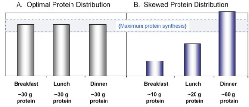 Protein distribution at meals. A) Ingestion of 90 grams of protein, distributed evenly at 3 meals. B) Ingestion of 90 grams of proteins unevenly distributed throughout the day. Stimulating muscle protein synthesis to a maximal extent during the meals shown in Figure 1A is more likely to provide a greater 24 hour protein anabolic response than the unequal protein distribution in Figure 1B. (Adapted from Paddon-Jones & Rassmussen Curr Opin Clin Nutr Metab Care 2009, 12: 86–90.)