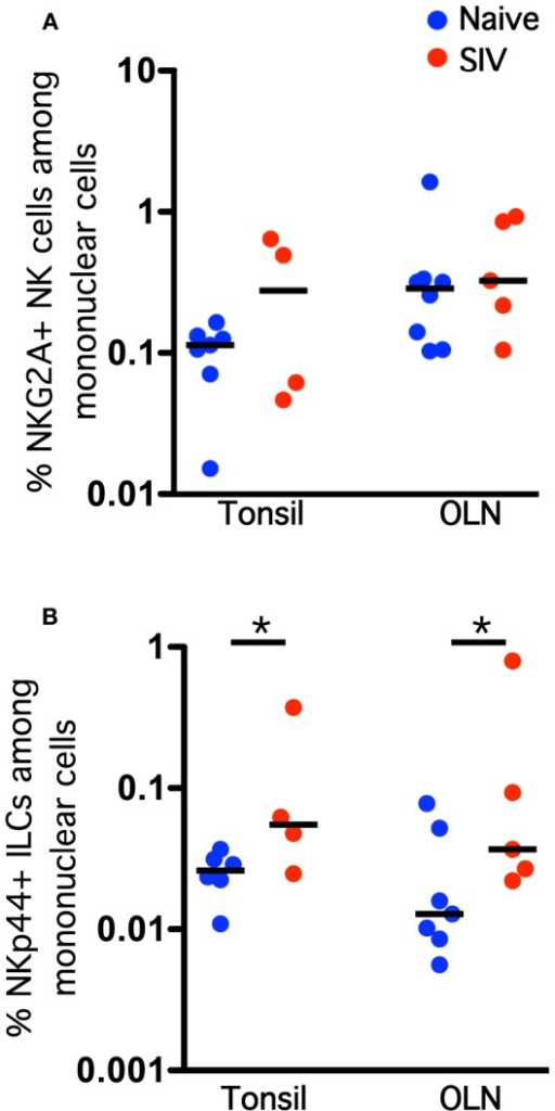 Chronic SIV infection induces an expansion of NKp44+ ILC frequencies in the oral mucosa. Frequencies of NKG2A+ NK cells (A) and NKp44+ ILCs (B) among live CD45+CD3− mononuclear cells in oral tissues of naïve and SIV-infected macaques. Horizontal lines indicate medians of 4–8 animals per group. Mann–Whitney U-tests were used for naïve-vs.-SIV comparisons; *P < 0.05.