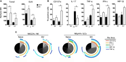 Chronic SIV infection alters functional profiles of oral mucosal NK cells and ILCs. (A) Intracellular perforin expression was determined in NK cells and ILCs ex vivo; bars represent means ± SEM for 6–8 animals per group. (B) OLN mononuclear cells were stimulated with PMA/ionomycin for 12 h and then CD107a expression, and IL-17, TNF-α, IFN-γ, and MIP-1β production were measured in NK cells and ILCs in naïve and SIV-infected macaques. The monofunctional profiles of each subpopulation were determined by expressing each response as a proportion of the total cell population. The means ± SEM for 6–8 animals per group are shown. (C) Multiparametric analyses were performed for each group using SPICE software (v.5.22). Mann–Whitney U-tests were used for naïve-vs.-SIV comparisons and Wilcoxon Matched Pairs tests were used to compare NK cells and ILCs; *P < 0.05; **P < 0.01. MFI, median fluorescence intensity; OLN, oral lymph nodes.