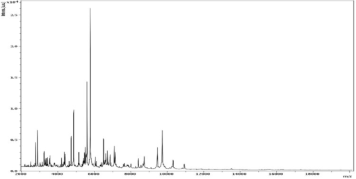 Reference mass spectrum from C. massiliensis strain JC225T. Spectra from 12 individual colonies were compared and a reference spectrum was generated.
