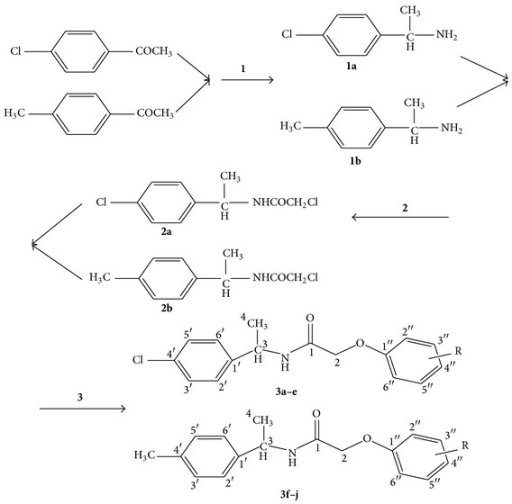 Synthesis of N-(1-(4-chlorophenyl)ethyl)-2-(substituted phenoxy)acetamide (3a–e) derivatives and 2-(substituted phenoxy)-N-(1-(p-tolyl)ethyl)acetamide (3f–j) derivatives.