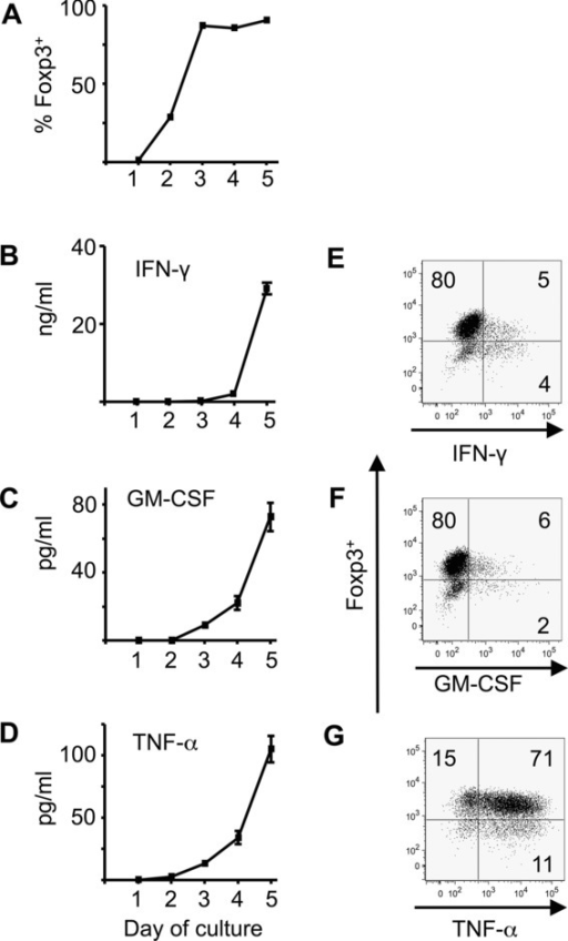 Production of IFN-γ, GM-CSF, and TNF-α occurs during primary iTreg-cell generation. Naive CD4+Foxp3gfp− cells were cultured in triplicate for 5 days in iTreg-cell conditions (IL-2 and TGF-β with plate-bound anti-CD3 and anti-CD28). Cells and supernatants were sampled daily. (A) The percentage of cells expressing Foxp3 as determined by intracellular Foxp3 staining and flow cytometry is shown. (B–D) Supernatants were analyzed by ELISA for the presence of (B) IFN-γ, (C) GM-CSF, and (D) TNF-α. Data are shown as mean ± SEM of triplicates from one experiment representative of three experiments. (E–G) Flow cytometry at the end of iTreg-cell culture (day 5) showing intracellular staining for Foxp3 and (E) IFN-γ, (F) GM-CSF, and (G) TNF-α. Numbers on plots refer to percentage in each quadrant rounded to the nearest integer.