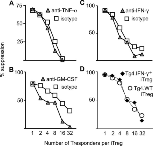 Production of IFN-γ, GM-CSF, and TNF-α is nonessential for iTreg-cell suppressive capacity. Varied numbers of iTreg cells were cocultured with a fixed number of naïve T responder cells as described in the Materials and methods. Proliferation was quantified by 3 H-thymidine incorporation after 96 h culture. Percent suppression was calculated, based on the means of triplicate cultures, following the addition, at the onset of co-culture, of (A) anti-TNF-α, (B) anti-GM-CSF, and (C) anti-IFN-γ. Filled triangles: anti-cytokine, open squares: isotype control antibodies. (D) The suppressive capacity of iTreg cells generated from Tg4.IFN-γ–/– mice were compared with that of iTreg cells generated from Tg4.CD90.1 (Tg4.WT) mice in suppression assays using naïve CD4+ Tg4 cells stimulated with MBP Ac1–9 and splenic APCs. Data are from one experiment representative of two experiments.