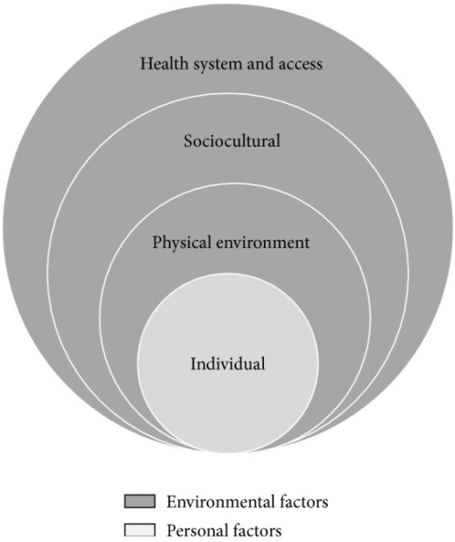 Ecological model for analysing HSB. Adapted from McLeroy et al. (1988) [14].