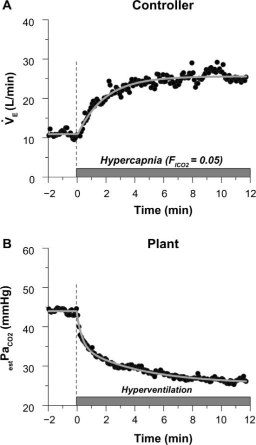 Typical dynamic properties (transient response properties) of the controller (A) and the plant (B) in the respiratory chemoreflex system. Arterial blood was collected one minute before and 11 minutes after the one-step intervention, and the arterial CO2 partial pressure (PaCO2) measured from each individual was used to calibrate the continuous end-tidal CO2 partial pressure (PETCO2) data and to obtain estimated PaCO2 (estPaCO2). In panel A, the controller property ( relation) can be approximated by a first-order low-pass filter (the gray smooth line). The coefficients were estimated as follows: ; 10.9 ± 2.1 L minute−1, gain Gu; 2.9 ± 1.8 L minute−1 mmHg−1, lag time Lu; 3.3 ± 4.9 seconds, time constant τu; 119. ± 48 seconds, ∆estPaCO2; 6.7 ± 2.6 mmHg. In panel B, the plant element ( relation) can be approximated by a second-order low-pass filter (the gray smooth line), showing a biphasic response with a rapid decline in the initial phase of step loading followed by a gradual decrease. The coefficients were estimated as follows: estPaCO2(0); 44.3 ± 1.9 mmHg, gain Gv1; −0.6 ± 0.3 mmHg L−1 minute, gain Gv2; −1.1 ± 0.6 mmHg L−1 minute, lag time Lv1: 0.8 ± 1.1 seconds; lag time Lv2; 0.5 ± 0.6 seconds; time constant τv1; 11.9 ± 10.9 seconds, time constant τv2; 214 ± 101 seconds.