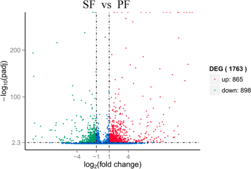 Volcano plot of differentially expressed genes in SF and PF.Differentially expressed genes were selected by q-value < 0.005&/log2 (fold change)/> 1 according the method of Storey et al.18. The x-axis shows the fold change in gene expression between SF and PF, and the y-axis shows the statistical significance of the differences. Splashes represent different genes. Blue splashes means genes without significant different expression. Red splashes means significantly up expressed genes. Green splashes means significantly down expressed genes. SF: sexual female, PF: parthenogenetic female, −log10(padj): the corrected p-value.