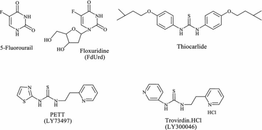 Fluorinated and thiourea anticancer agents