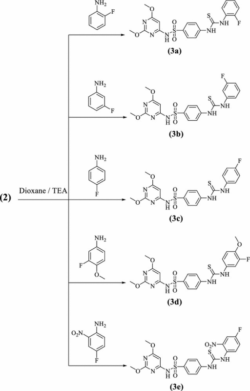 Synthetic route and structures for thiourea derivatives (3a–e)