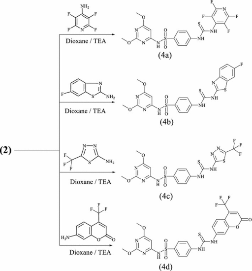 Synthetic route and structures for thiourea derivatives (4a–d)