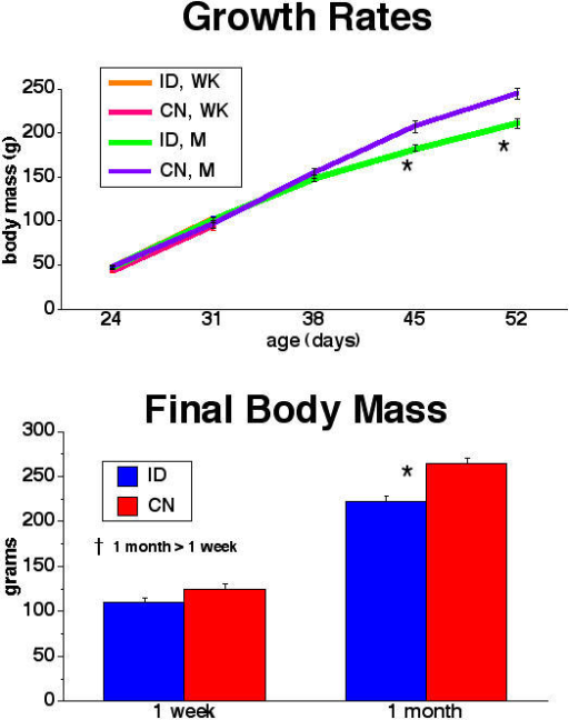 Rat Growth Rate and Final Body Mass