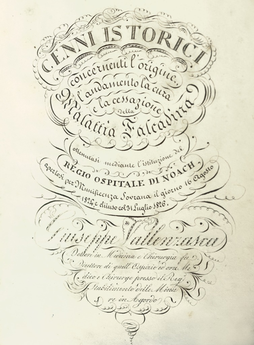 <p>Title page from Della Falcadina, is a swirling extravaganza of calligraphic ornaments and festoons. Dedicated to a viceroy of the House of Hapsburg, the calligraphy is reminiscent of the diplomatic minuscule based on Carolingian script--appropriate for an imperial presentation text.</p>
