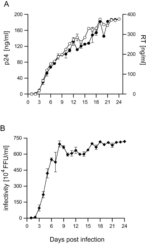 Time course of HIV-1 Ba-L production in MDM. Human MDM were infected with 9.3 × 105 focus-forming units (FFU) of HIV-1 Ba-L. Supernatants were collected daily and analyzed for (A) p24 content (○) or reverse transcriptase (•) and (B) infectivity on NP-2 CD4/CCR5 indicator cells. Activities are corrected for the dilution effect of feeding.