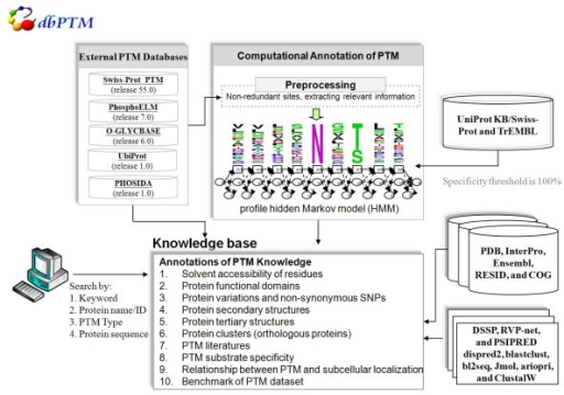 The system architecture of the knowledge base for protein translational modification. It comprises the three major components: integration of external experimental PTM databases, learning and prediction of 20 types of PTM, and annotations of PTM knowledge (more details in the text).