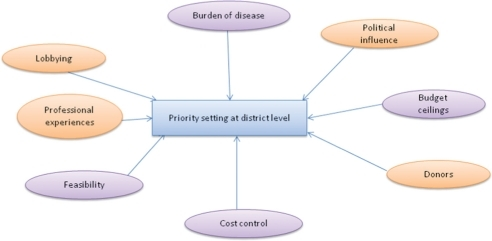 Factors influencing CHMT's priority-setting decisions: Source (19).
