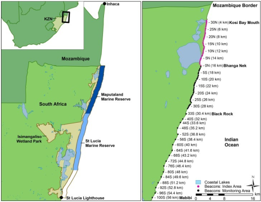 Turtle nesting areas in South Africa, and study area for the long-term monitoring program, indicating the marine reserves, index and monitoring areas for the 56 km south of the Mozambique border.