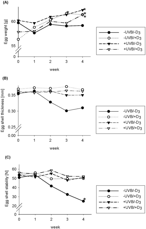 Egg weight and egg shell quality in response to UVB exposure and dietary vitamin D3.Effects of UVB exposure (UVB) and dietary vitamin D3 (D3) on egg weight (A), egg shell thickness (B), and egg shell stability (C) over 4 weeks. Data in the panels represented means (n = 9). Data were analyzed by two-way ANOVA with the classification factors UVB exposure, vitamin D3 in the diet, and the interaction between both factors. (A) No significant difference. (B) Effect of vitamin D3 (week 2): p<0.05, UVB × vitamin D3 (week 2): p<0.05. Effect of vitamin D3 (week 3 and 4): p<0.01, UVB × vitamin D3 (week 3 and 4): p<0.10. (C) Effect of UVB (week 2): p<0.05. Effect of UVB (week 3): p<0.10, vitamin D3 (week 3): p<0.10. Effect of UVB (week 4): p<0.01, vitamin D3 (week 4): p<0.05, UVB × vitamin D3 (week 4): p<0.05. Data were additionally analyzed by paired t-test, *significantly different from baseline.