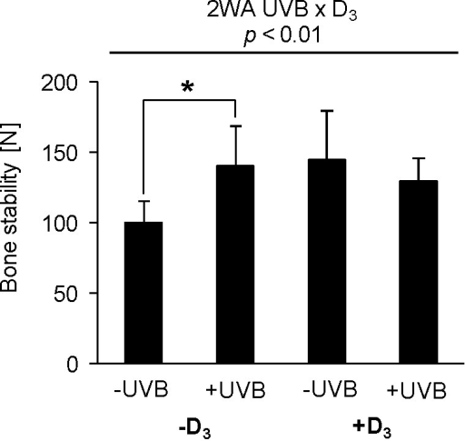 Bone stability in response to UVB exposure and dietary vitamin D3.Data in represent mean ± SD (n = 9) of tibiotarsus stability of non-treated (-UVB) or UVB-treated (+UVB) hens that were fed either a vitamin D3-deficient (-D3) or vitamin D3-adequate diet (+D3), respectively. Data were analyzed by two-way ANOVA. Classification factors were UVB exposure, vitamin D3 in the diet, and the interaction between both factors. Effect of vitamin D3: p<0.10, vitamin D3× UVB: p<0.01. Individual means between two groups were compared by the unpaired Student's t-test, **p<0.01.
