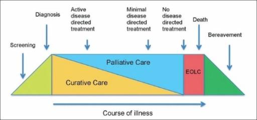 palliative care care plan template - representing the continuum of palliative care and end o