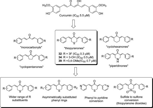Replacement of the β-diketone moiety of curcumin by monocarbonylcross-conjugated dienones (monocarbonyls, cyclopentanones, cyclohexanones,thiopyranones, piperidinones). The thiopyranones 32, 34, and 39 had potent growth inhibitory activities(IC50) on NB4, an APL cell line,27 and were targeted for further modifications (shown in box) in thisreport.