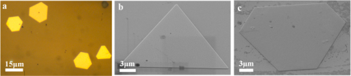 (a) Typical optical microscope image of gold nanoplates. (b) and (c) are SEM images of triangular and hexagonal nanoplate, respectively. The images are taken with 54° tilting angles for the sample stage.