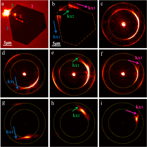 Experimentally recorded Fourier images of hexagonal gold nanoplates.(a) The bright field image in the real image plane of the hexagonal gold nanoplate with labelled edges (1, 2 and 3). The red arrow represents the polarization of incident light. (b) The dark field images in the real image plane of SPP corner modes propagating along three labelled edges. (c) The Fourier image of propagating SPP modes in all different directions under the polarization state in (a). By adjusting the polarization of incident light, the Fourier images correspond to intensity peaks of the three propagation directions (kx1, kx2 and kx3) are shown in (d) to (f). By extracting the propagating leaky SPP corner mode in one direction (kx1, kx2 or kx3) in the real image plane, the corresponding Fourier images are shown in (g) to (i).