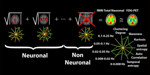 Pictorial description of the methodology used to construct the fMRI total neuronal scalar map starting from automatically selected neuronal independent components. Neuronal independent components were selected based on their fingerprint, which describes for each component, spatial properties of the distribution of the Z scores as extracted from the spatial map and temporal properties as extracted from the corresponding time course. The green line on the fingerprint represent the mean values obtained from an independent group of normal volunteers, the red line represents the values observed in the assessed subject.
