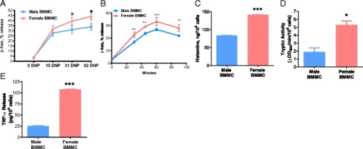 Female BMMCs release more preformed mediators in response to IgE-mediated degranulation. BMMCs were sensitized with anti-DNP IgE (1 μg/mL) overnight and later stimulated with DNP-HSA. a Male and female BMMCs were stimulated with 0, 15, 31, and 62 ng/mL of DNP-HSA for 1 h and female BMMCs exhibited elevated β-hexosaminidase release at all DNP concentrations (P < 0.05; n = 6). b Compared with male BMMCs, female BMMCs had an increased release of β-hexosaminidase after 30, 45, 60, and 90 min of DNP-HSA stimulus (62 ng/mL). c Female BMMCs released 141.9 ng/106 cells of histamine into supernatant and male BMMCs released 83.7 ng/106 cells of histamine after 1 h DNP stimulus (62 ng/mL) (P < 0.001; n = 5). d Tryptic activity from female BMMCs increased to 5.3 after degranulation, and tryptic activity from male BMMCs was 1.9 after degranulation with 1 h DNP stimulus (62 ng/mL) (P < 0.05; n = 6). e Female BMMCs released 107.4 pg of TNF-α into supernatant and male BMMCs released 25.5 pg after 1 h DNP stimulus (62 ng/mL) (P < 0.001; n = 5). All mediator release was normalized to unstimulated cells of respective sex. Values represent mean ± SE. #P = 0.10 *P < 0.05, **P<0.01 ***P < 0.001 vs. males