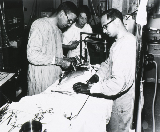 <p>Three quarter length, right profile; wearing glasses; wearing surgical gown and gloves (no cap or mask); working on patient (animal?) on operating table; two assistants.</p>