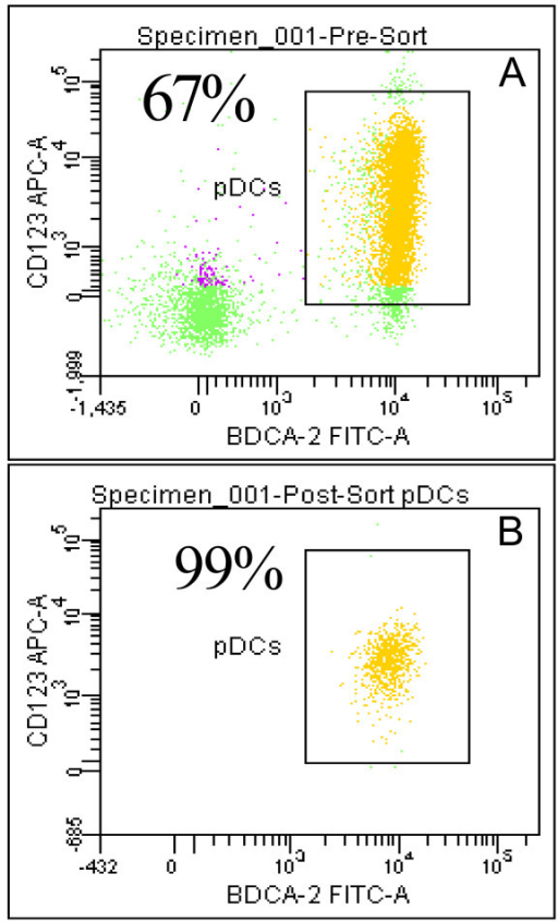 Purity of pDC preparations as determined by flow cytometry. Representative histograms for partially purified pDC (A) and flow purified pDC (B). pDC were separated from PBMC using anti BDCA4 microbeads. The partially purified cells were then labeled with CD123-APC, BDCA2-FITC, and CD11c-PE antibodies and sorted on a FACSAria flow cytometer to a final purity of > 99%. Numbers in the top, left hand corner of the dot plots indicate the percentage of CD123+, BDCA-2+, CD11c- cells.