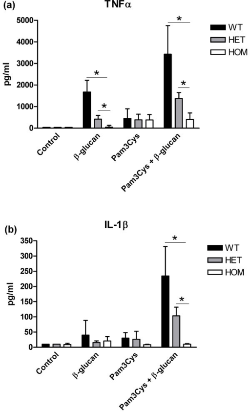 Cytokine production capacity of TNF-α (a) and IL-1β (b) after stimulation of monocyte derived macrophages during 24 hours with β-glucan, Pam3Cys, or β-glucan/Pam3Cys. Cells were obtained from individuals with the wild-type (WT, n = 6), heterozygous (HET, n = 4), and homozygous (HOM, n = 4) for the DECTIN-1 Y238X polymorphism. Cytokine concentrations were determined with enzyme-linked immunosorbent assay (ELISA). Data are expressed as mean values ± SD, *P ≤ 0.05.