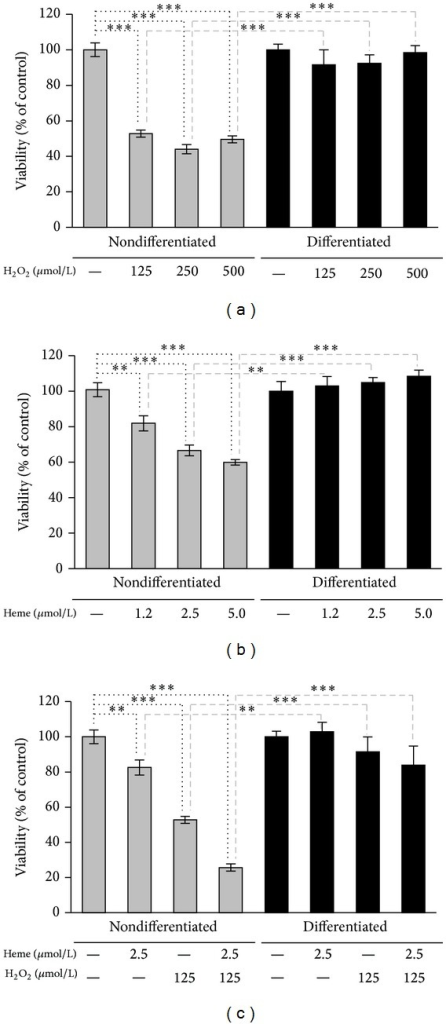 Mature podocytes are highly resistant to oxidative stress. (a) Nondifferentiated and differentiated podocytes were exposed to H2O2 (0–500 μmol/L in HBSS) for 4 hours. Cell viability was assessed by MTT assay. (b) Nondifferentiated and differentiated podocytes were subjected to heme treatment (0–5 μmol/L in HBSS). After 1 hour heme was replaced by HBSS. Cell viability was measured by MTT assay after a 4-hour incubation period. (c) Nondifferentiated and differentiated podocytes were treated with heme (2.5 μmol/L in HBSS) or vehicle for 1 hour. After washing the heme away cells were exposed to H2O2 (125 μmol/L in HBSS) or vehicle for 4 hours. Cell viability was determined by MTT assay. Results are shown as mean values ± SEM of at least three independent experiments each performed in quadruplicate. **P < 0.01, ***P < 0.001.