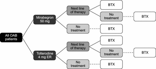 Markov treatment pathway. BTX botulinum toxin, ER extended release, OAB overactive bladder syndrome