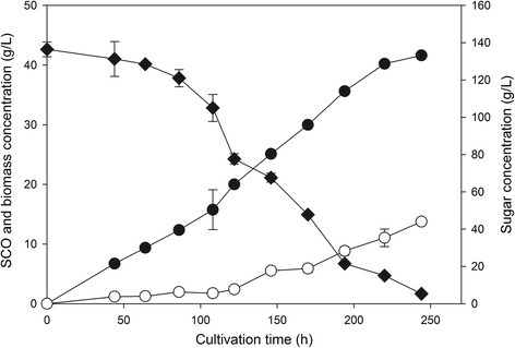 Time course of single cell oil (SCO) production on juice obtained from 20% w/w solids concentration. Time course of sugars consumption (diamond), biomass (filled circle) and lipid (circle) concentration when R. toruloides was cultivated on sweet sorghum juice that came from 20% w/w sweet sorghum concentration.