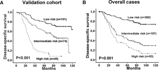 Comparison of disease-specific survival based on a novel clinico-pathological prognostic model (including ULK1 expression, therapy response and overall clinical stage) in the validation cohort (A) and overall cases (B) (log-rank test).