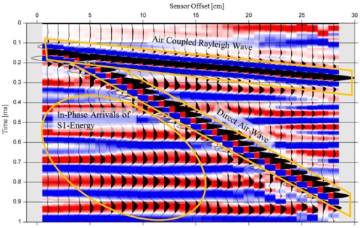 Recordings of pressure changes in the air in the simulation model. For better visualization, each trace is individually scaled to its maximum value.