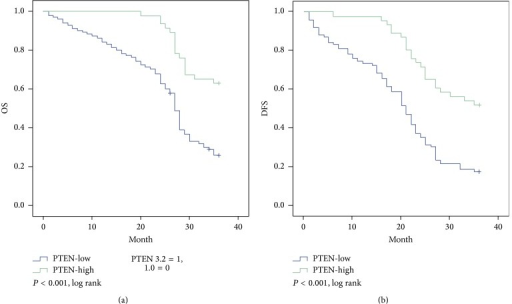 Kaplan-Meier estimates of survival among the study patients, according to tumor PTEN expression. For 3-year overall survival time (a) and 3-year progression-free survival time (b), PTEN expression was significantly associated with improved outcomes (P < 0.001; P < 0.001, resp.).
