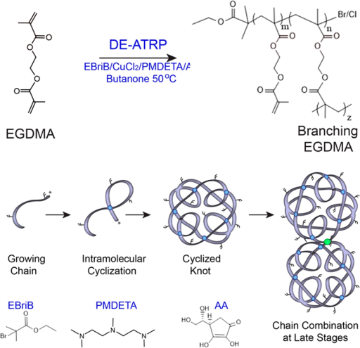 "A simple ""one-pot"" route to a photocrosslinkable pre-polymer.The homopolymerization of EGDMA via in situ Deactivation Enhanced ATRP (DE-ATRP) allows the formation of a growing chain and intramolecular cyclizations. In the early reaction phases a knot structured polymer is produced, however, at later stages these knots combine via traditional intermolecular branches."