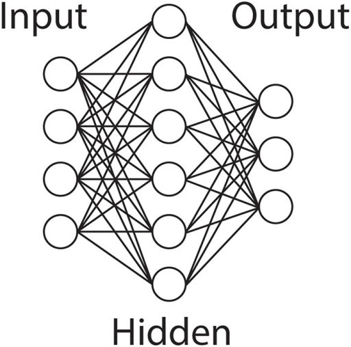 Artificial Neural Network. An illustration of a typical ANN topology. An input layer projects to a single hidden layer, which connects to the output layer. Common variations include additional hidden layers and recurrent connections.