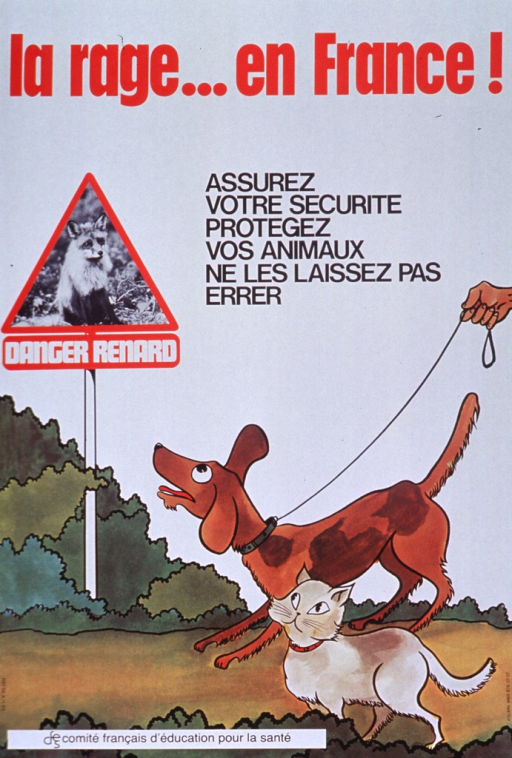 <p>Multicolor poster with red and black lettering.  Title at top of poster.  Caption below title urges reader to guarantee personal safety and protect animals by not letting them wander.  Visual image is an illustration of a dog and a cat walking along a path with some shrubbery in the background.  The dog is on a leash, though only the hand of his walker is visible.  The animals look up at a triangular sign bearing a b&amp;w photo of a fox.  The sign reads &quot;Danger fox.&quot;  Publisher information at bottom of poster.</p>
