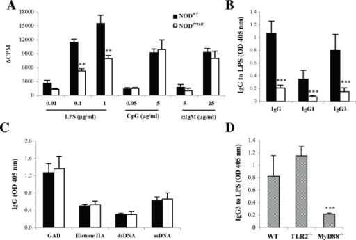 Natural Anti-LPS IgG3 is generated via MyD88-dependant TLR4 signaling.A. Purified B cells from NOD P712H and NODWT mice were activated in vitro with LPS, CpG or αIgM and the proliferative response was assayed. ** P<0.01 when compared to NODWT mice. B. Total IgG and IgG1 vs. IgG3 antibodies to LPS in NODWT (n = 13) and NOD P712H mice (n = 7). *** P<0.001 when compared to NODWT mice. C. IgG antibodies to GAD, histone IIA, dsDNA and ssDNA in NODWT (n = 13) and NOD P712H mice (n = 7). D. IgG3 antibodies to LPS in WT, TLR2−/− and MyD88−/− mice (n = 4). *** P<0.001 when compared to WT or TLR2−/− mice. Results represent mean (±SD) of each group.