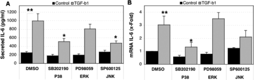 Effect of MAPK on the TGF-β1 induced expression of IL-6. Three independent primary cultures of HTM cells were serum-starved for 16 h, pre-treated for 2 h with the MAPK inhibitors, and then incubated in serum-free media with TGF-β1 (5 ng/ml) in the presence of the MAPK inhibitors (10 μM). A: Secreted IL-6 quantified by ELISA at 16 h post-treatment is shown. B: Differential IL-6 mRNA expression compared to control-DMSO, calculated at 6 h post-treatment. The asterisk indicates that p is greater than 0.001, and a double asterisk denotes that p is less than 0.001. Statistical significance between groups was assessed by the paired Student's t-test (n=3).