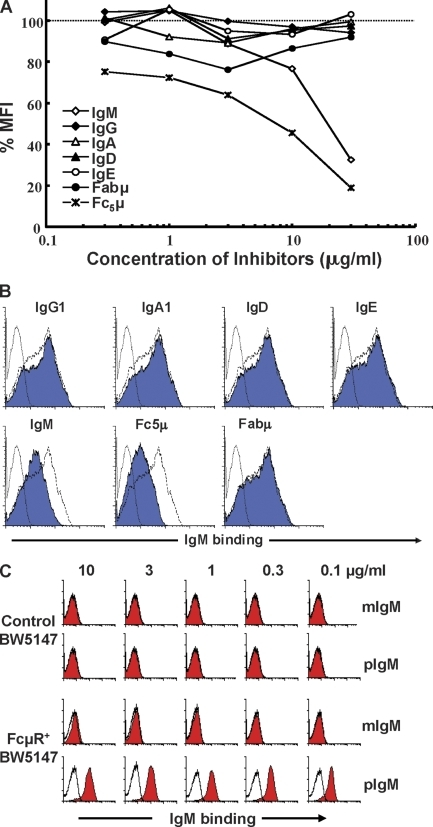 Evaluation of the Ig isotype specificity of the FcμR. (A) FcμR cDNA–transduced BW5147 T cells were preincubated with various concentrations of inhibitor paraproteins of human origin (IgM, IgG1-4, IgA1-2, IgD, IgE, Fabμ, and Fc5μ) and incubated with 4 µg/ml of biotin-labeled human IgMκ. Bound biotinylated IgM was detected by addition of PE-labeled SA. Stained cells were analyzed by flow cytometry. Results are expressed as the percent mean fluorescence intensity (MFI) estimated as follows: 100 × ([X of IgM binding with inhibitors − X of background control]/[X of IgM binding without inhibitors − X of background control]), where X indicates the MFI values. Because there were no significant differences among each subclass of IgG and IgA, the results from all four IgG subclasses and two IgA subclasses have been combined as IgG and IgA, and the mean values are presented for simplicity. (B) Representative binding inhibition profiles. FcμR+ BW5147 T cells were incubated first with an eightfold excess of the indicated inhibitor proteins and then with 4 µg/ml of biotin-labeled human IgMκ. The dotted, dashed, and continuous lines indicate the immunofluorescence profiles for background controls, IgM binding without inhibitors, and IgM binding with the test inhibitors, respectively. (C) Control and FcμR+ BW5147 cells were incubated with culture supernatants containing the indicated concentrations of monomeric (m) or pentameric (p) IgM anti–mouse RBC mAb before developing with biotin-labeled anti–mouse κ mAb and APC-SA. These experiments were performed at least twice.