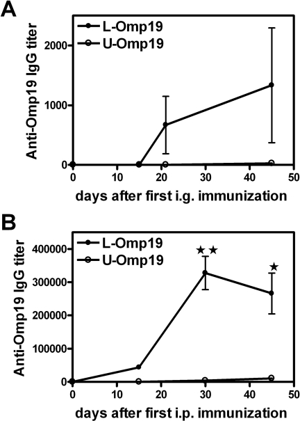 Kinetic of the specific humoral responses elicited after administration of adjuvant-free Omp19.BALB/c mice were immunized i.g. (A) or i.p. (B) with L-Omp19 (•) or U-Omp19 (○) without adjuvants as indicated in materials and methods and the kinetic of the Omp19 specific humoral response elicited after immunizations was determined. Serum samples were obtained at the indicated time after the first immunization. Omp19-specific IgG Ab titers were determined by ELISA. Each point represents the mean ± S.E.M of the Ab titer from 5 mice per group. (★) and (★ ★) significantly different from the U-Omp19 immunized group, (P<0.05) and (P<0.01), respectively. This experiment was conducted three times with similar results.